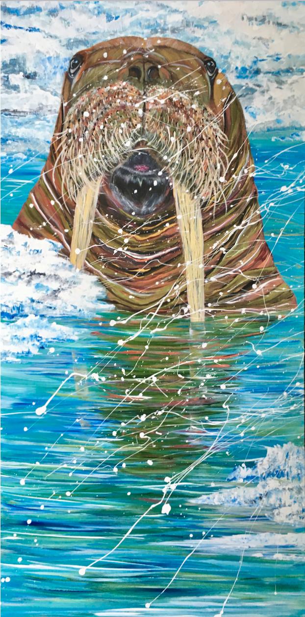Walrus - 2018