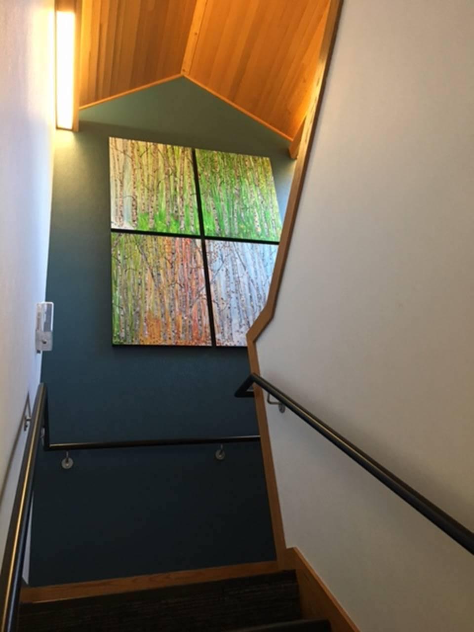 Calista panels - long view